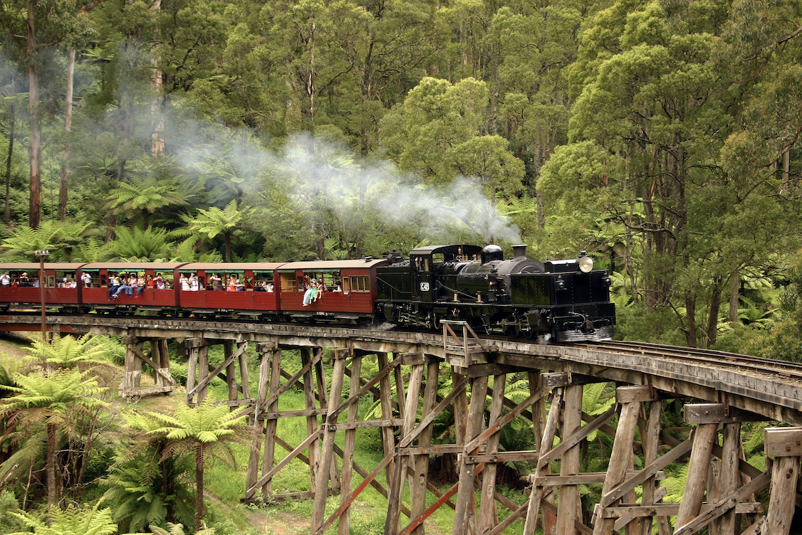 Puffing billy traveling through the Dandenong Ranges.
